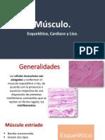 Fisiología músculos