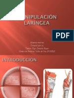 Manipulación laríngea