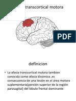 Afasia Transcortical Motora (1)
