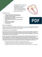 Fibrilación Auricular vs Flutter Auricular