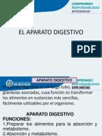 Clase_4_CUIDADOS_ENFER_SISTEMA_DIGESTIVO__18__0.ppt