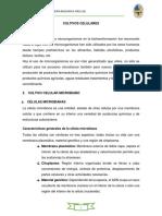 CULTIVOS CELULARES (2)