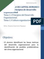 Desarrollo-Organizacional RGP (1)