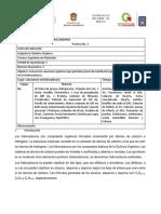 practica 2 PETROQUIMICA.docx
