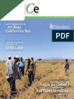 Revista EnlACe No. 16 (1).pdf