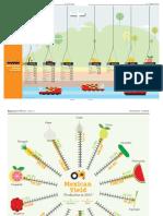 enFileAttach_3090_MexicanAgroindustry2013_IndustriaAgroalimentariadeMexico2013.pdf