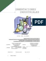 Fermentaciones_Industriales