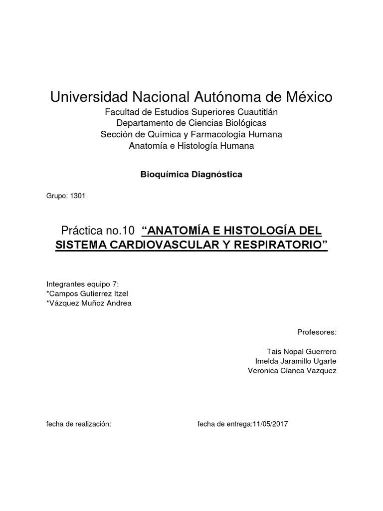 Aparato respiratorio y cardiovascular