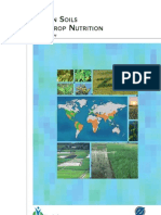 Zn in Soils and Crop Nutrition 2008