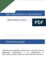 ejehipotalamo-hipofisiario