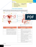 Act Complementaria SEXTO sistemas reproductores