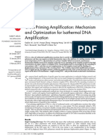Cross Priming Amplification