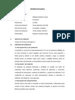 Informe Wais IV