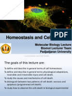 Edited Homeostatis and Death Cell