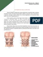Anatomia - Fígado, Vias Biliares Extra-hepaticas, Pancreas e Baço