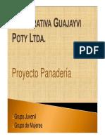 CooperativaGuayaibi.pdf