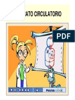 -Sistema circulatorio-.pdf