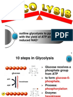 microteaching_glycolysis_tor.ppt