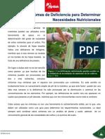 Sintomas de Deficiencia Para Determinar Necesidades Nutricionales