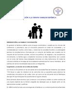 1Sesion 6 Introduccion a La Terapia Familiar Sistemica