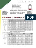 Juver González Minicargador.pdf