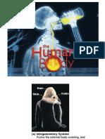 Part Human Body