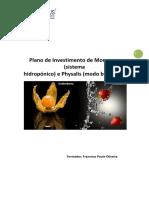 1_-_MORANGOS_PHYSALIS_Curso_de_Gestao_de_Empresa_Agricola_II (1).pdf