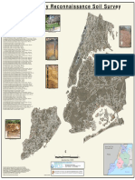 NYC Soil Map
