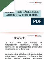 Conceptos Básicos de La Auditoría Tributaria