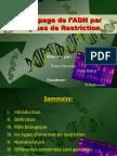 Découpage L'ADN Par Les Enzymes de Restriction