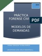 PRACTICAS FORENSES.doc