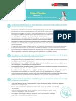 Retos para la Educación Básica y el Perfil de egreso_Ideas fuerza.pdf