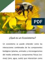 Servicios_Ecosistémicos.pdf