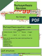 B2 Photosynthesis.pptx