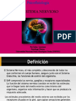 Sistema Nervioso Humano1