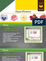 Giant Flowers Project Handbook Web