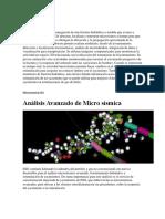 Microsismica slumberger