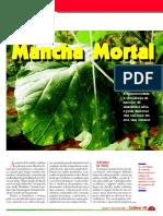 hf16_manchamortal