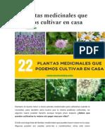 22 plantas medicinales que podemos cultivar en casa.docx