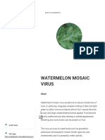 Watermelon Mosaic Virus _ the Current Cucurbit Field Diagnostic Tool