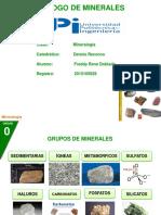 CATALOGO MINERAL DE MINERALES.pdf