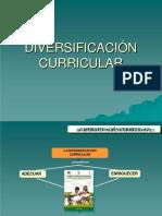 Diversificacion Curricular.output
