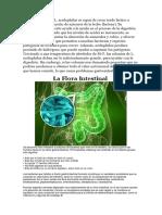 La Cepa Bacteriana L