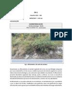 Informe Geomorfo Final