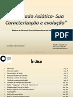 Mercado Asiático - Trabalho de Vilma Hipólito e Diana Milene.pdf