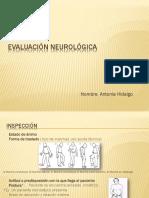 Kine Evaluación Neurológica 2016