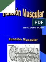 3. Función Muscular