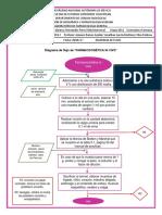 Diagrama de Farmacocinetica in Vivo