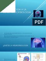 La Clase Neurofisiologia