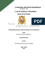 Biodegradación de petróleo crudo en Terrarios.pdf